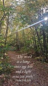 Lamp unto my path3